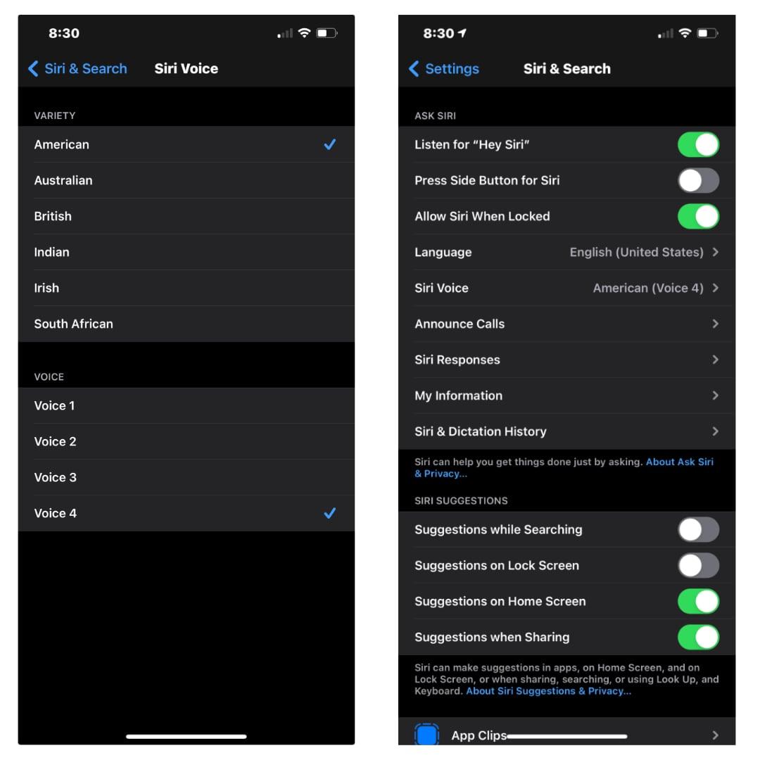 iOS 14.5- How to Change Siri's Voice 3